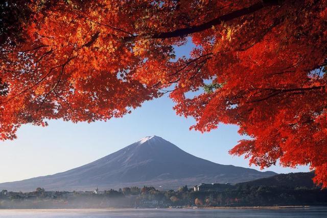 河口湖と紅葉.jpg