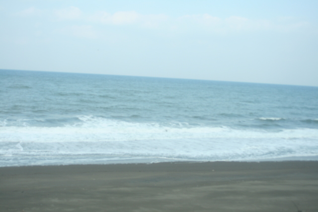 IMG_333打ち寄せる波と砂浜がダイナミックに車窓に広がるJR信越本線 0.JPG