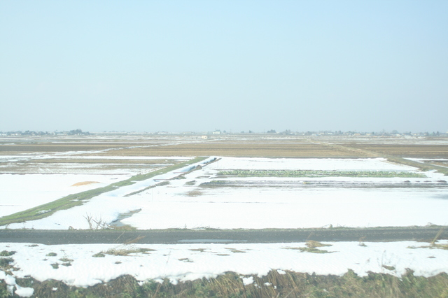 IMG_33車窓には広大な穀倉地帯である越後平野が広がるJR信越本線37.JPG