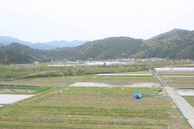 IMG_3230宍喰駅付近には田んぼも広がる.JPG