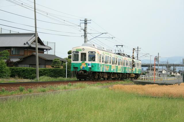 IMG_4710.JPG