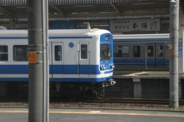 IMG_7601.JPG